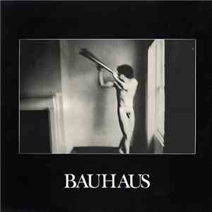 Bauhaus - In The Flat Field album FLAC
